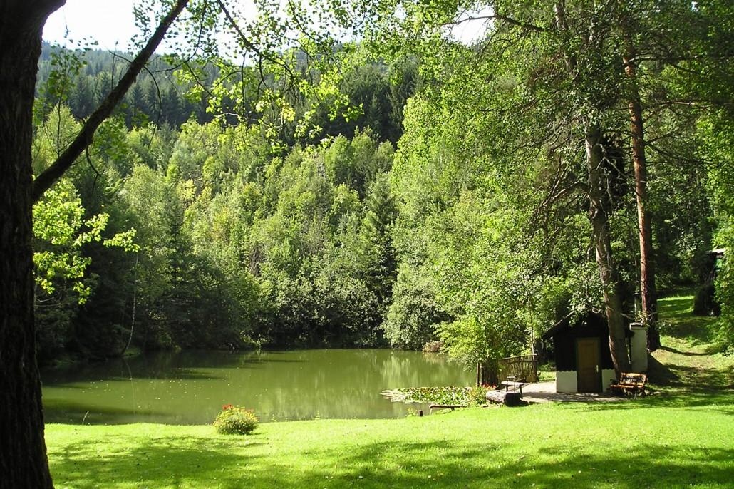 Tagbauteich in Leoben-Seegraben