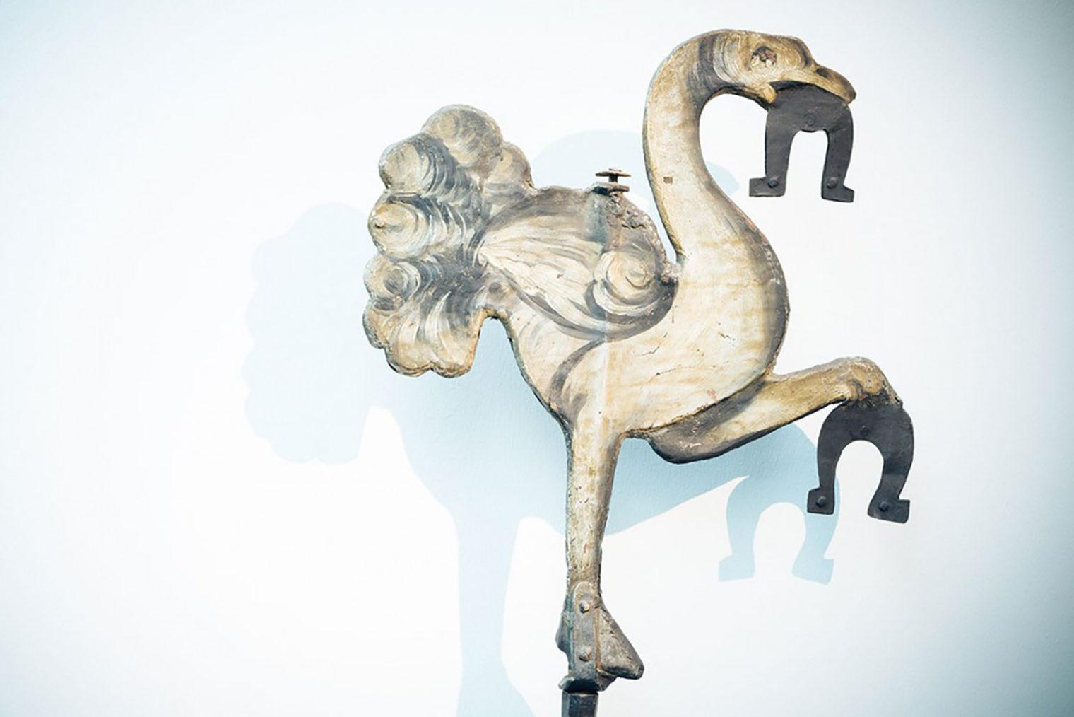 Darstellung des Vogel Strauss im MuseumsCenter Leoben