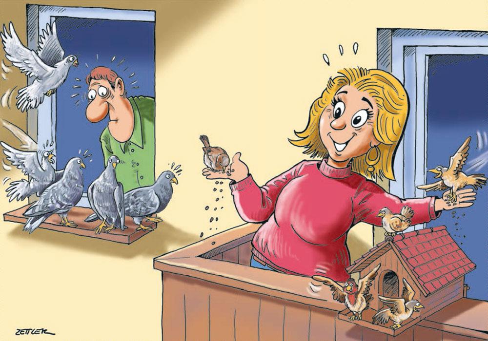 Illustration zum Thema Vogelfütterung